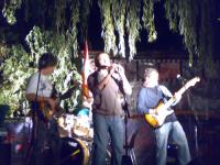 thumbnail of Concerti alla sera